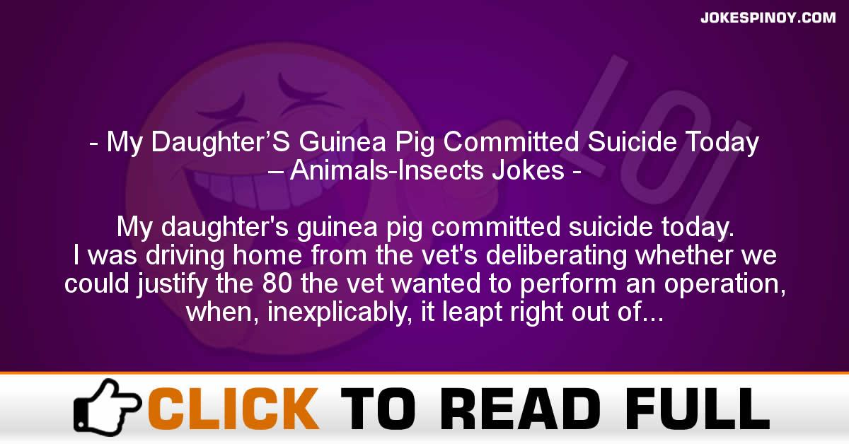 My Daughter'S Guinea Pig Committed Suicide Today – Animals-Insects Jokes