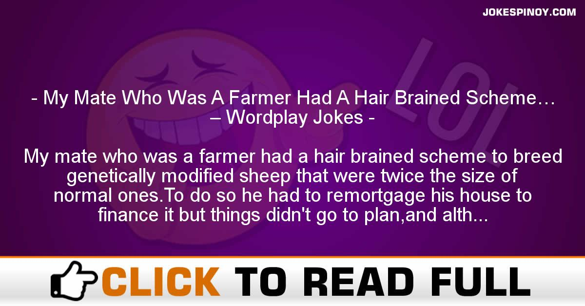My Mate Who Was A Farmer Had A Hair Brained Scheme… – Wordplay Jokes