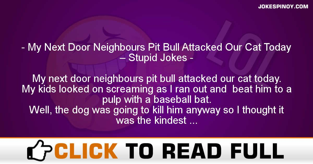 My Next Door Neighbours Pit Bull Attacked Our Cat Today – Stupid Jokes
