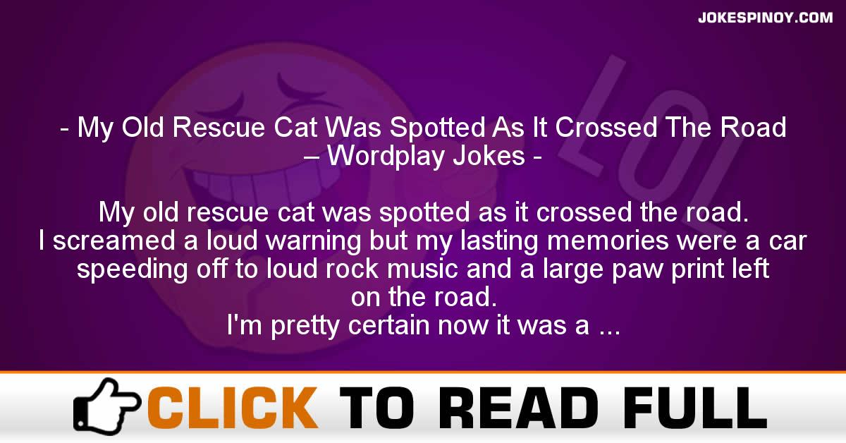 My Old Rescue Cat Was Spotted As It Crossed The Road – Wordplay Jokes