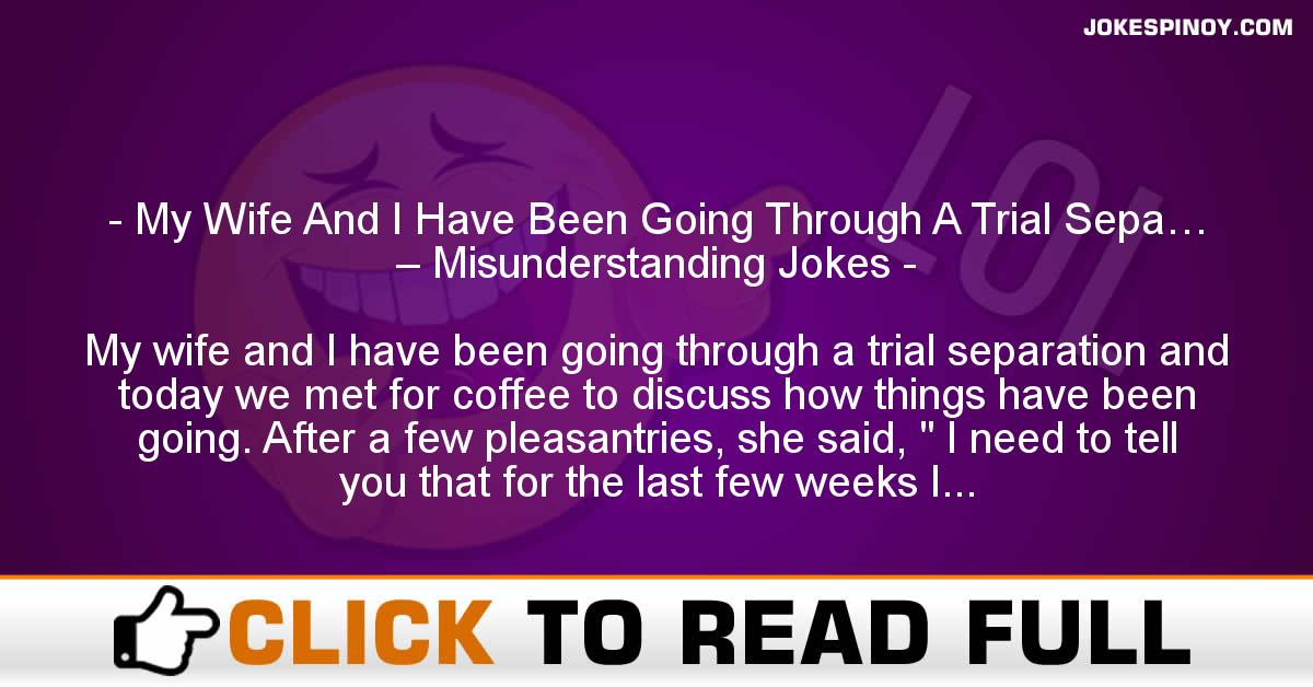 My Wife And I Have Been Going Through A Trial Sepa… – Misunderstanding Jokes