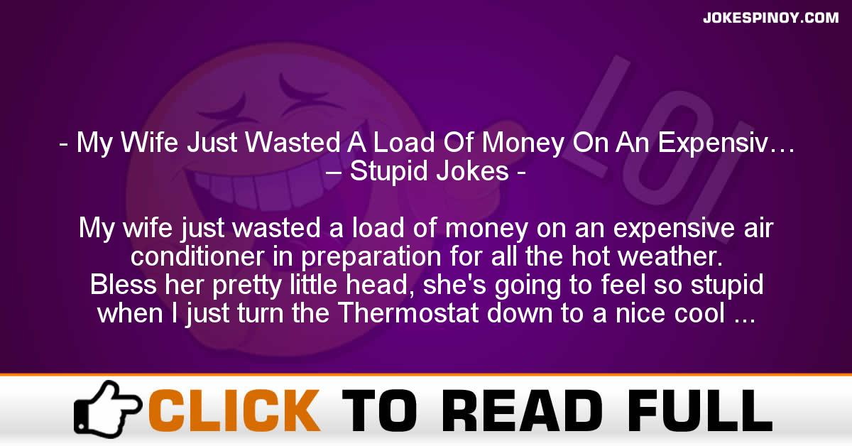 My Wife Just Wasted A Load Of Money On An Expensiv… – Stupid Jokes