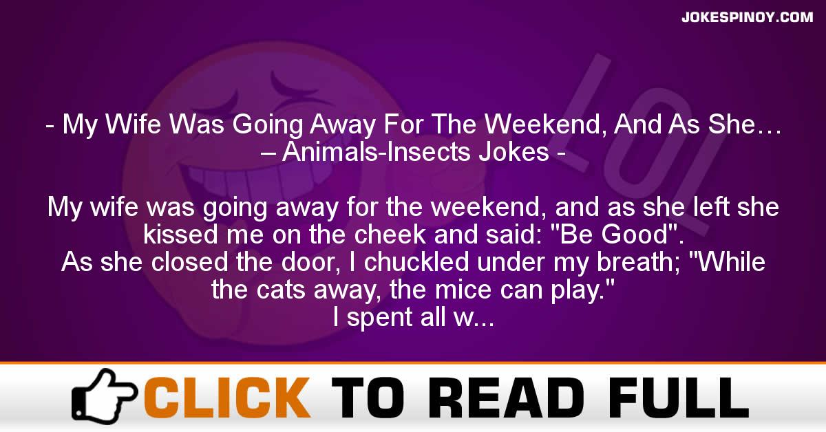 My Wife Was Going Away For The Weekend, And As She… – Animals-Insects Jokes