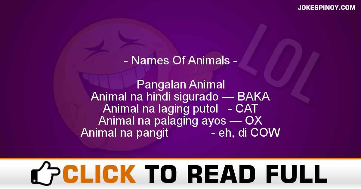 Names Of Animals
