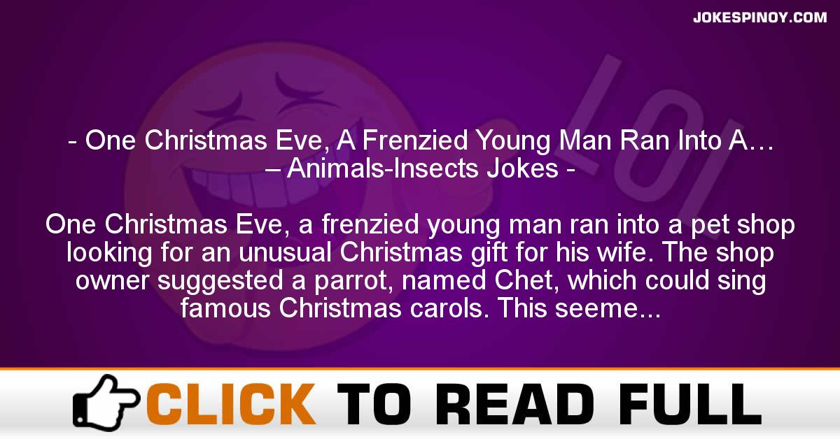 One Christmas Eve, A Frenzied Young Man Ran Into A… – Animals-Insects Jokes