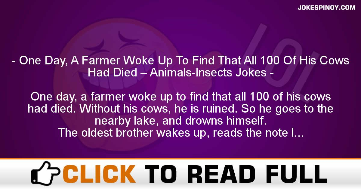 One Day, A Farmer Woke Up To Find That All 100 Of His Cows Had Died – Animals-Insects Jokes