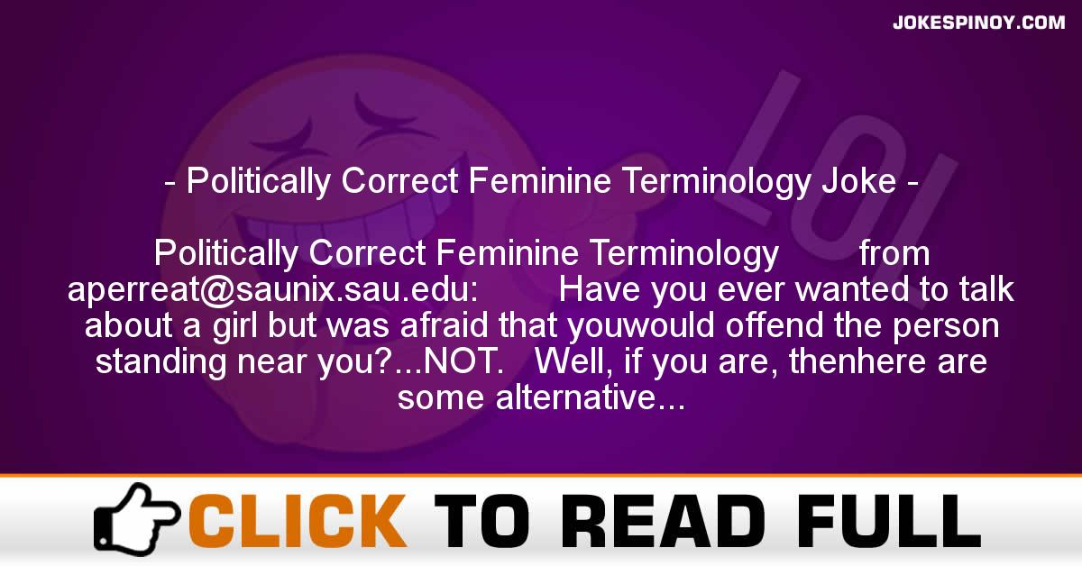 Politically Correct Feminine Terminology Joke