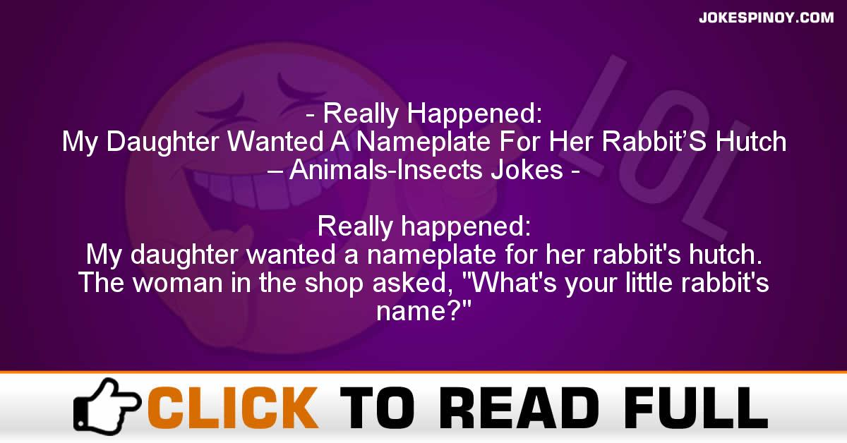 Really Happened: My Daughter Wanted A Nameplate For Her Rabbit'S Hutch – Animals-Insects Jokes