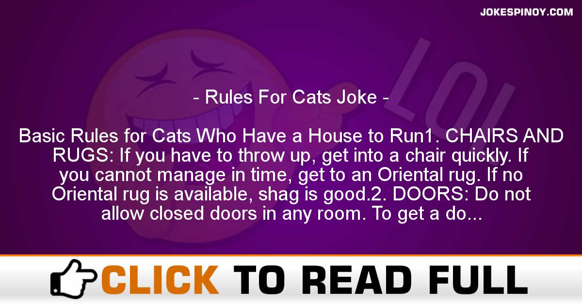 Rules For Cats Joke