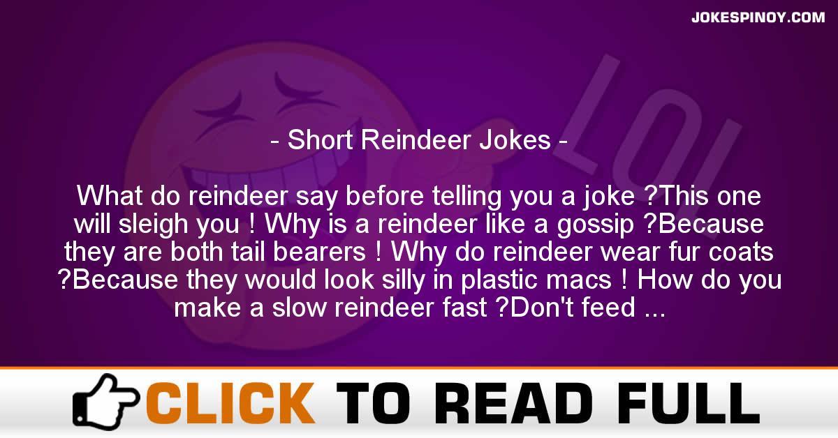 Short Reindeer Jokes