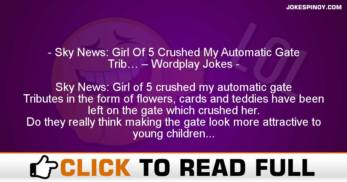 Sky News: Girl Of 5 Crushed My Automatic Gate Trib… – Wordplay Jokes