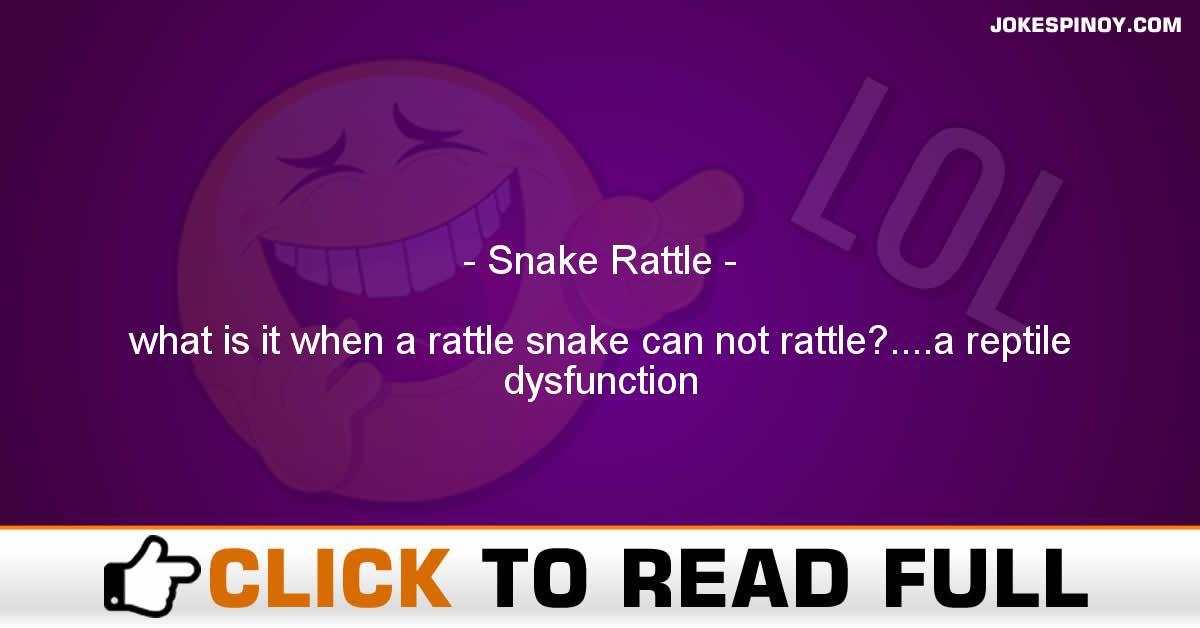 Snake Rattle