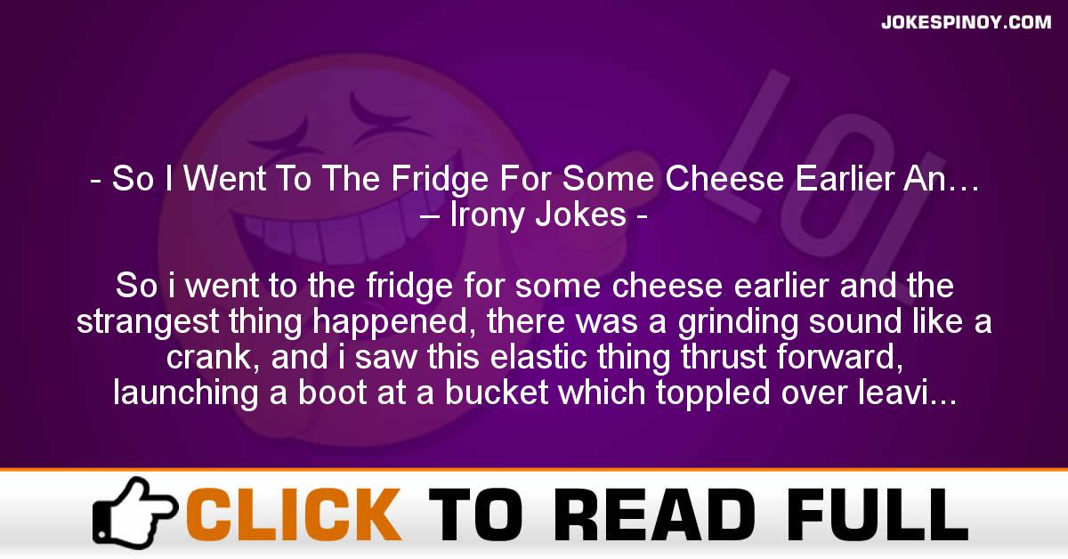 So I Went To The Fridge For Some Cheese Earlier An… – Irony Jokes