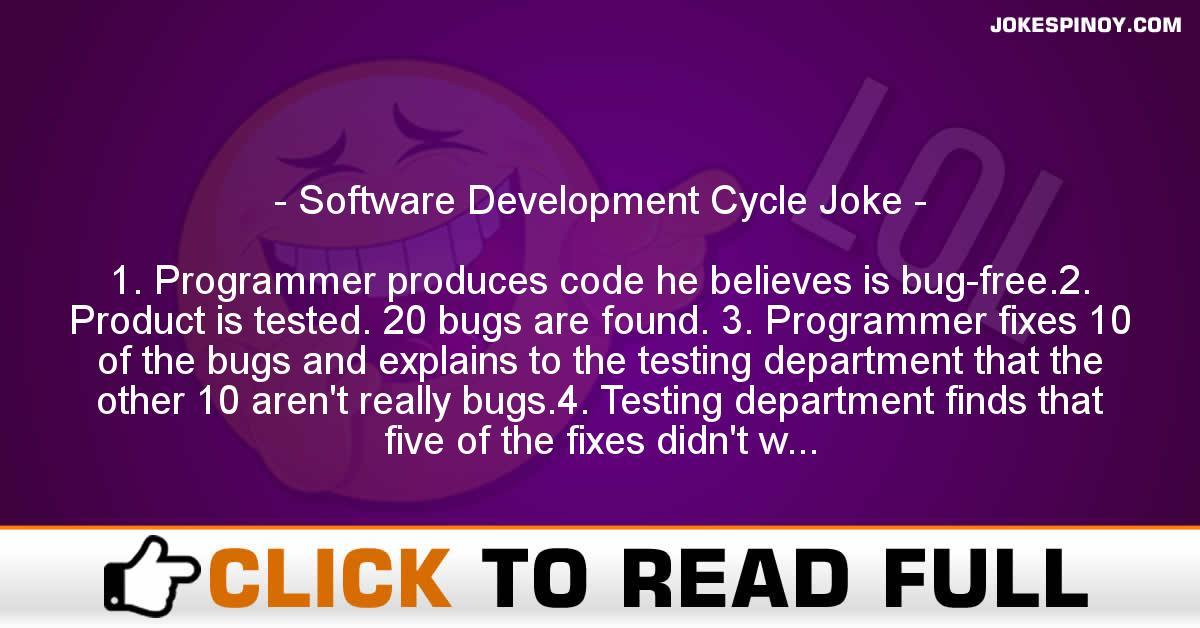 Software Development Cycle Joke