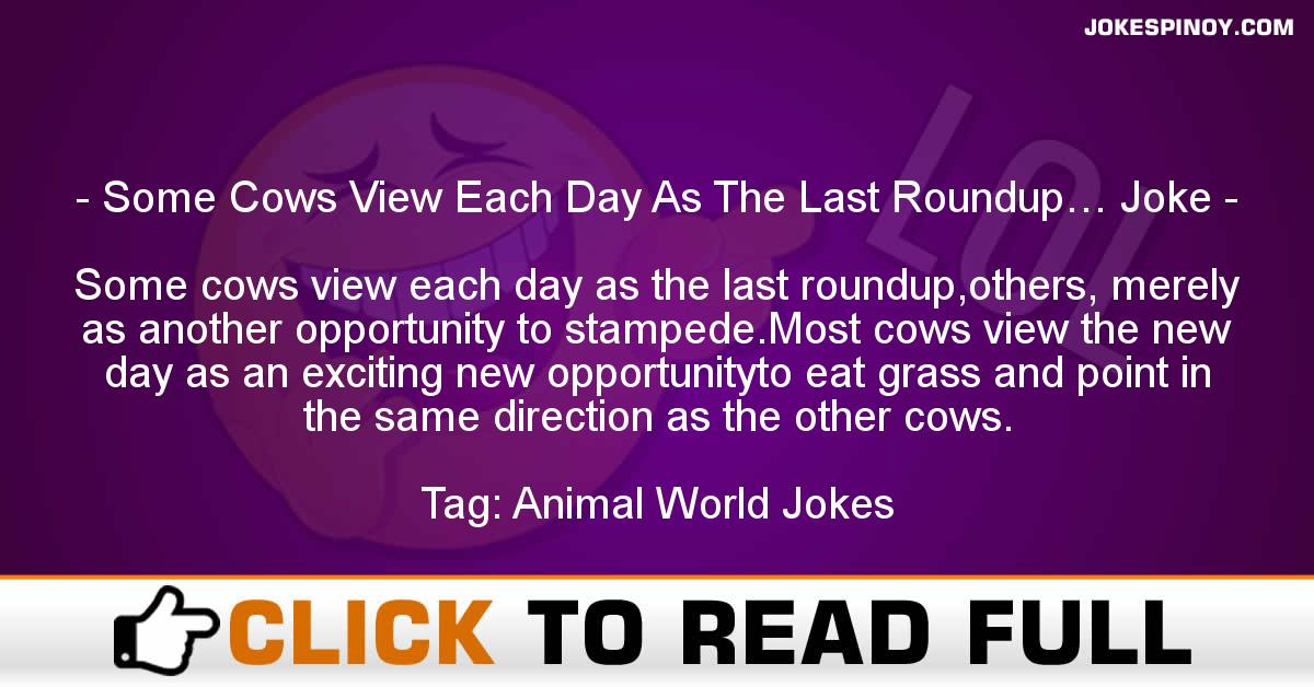 Some Cows View Each Day As The Last Roundup… Joke