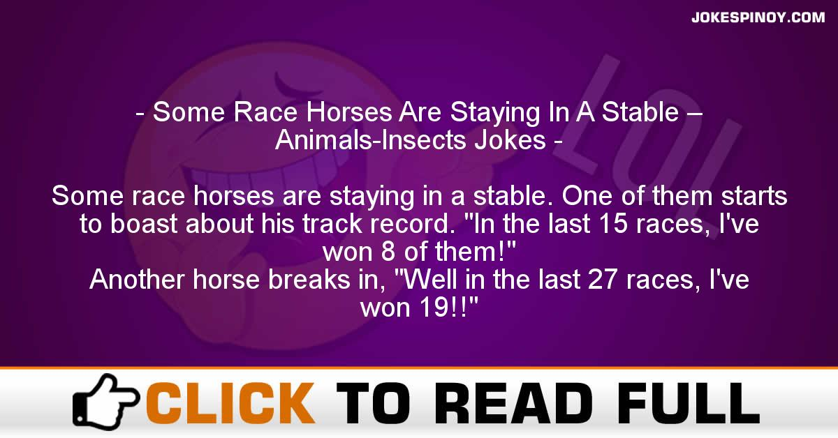 Some Race Horses Are Staying In A Stable – Animals-Insects Jokes