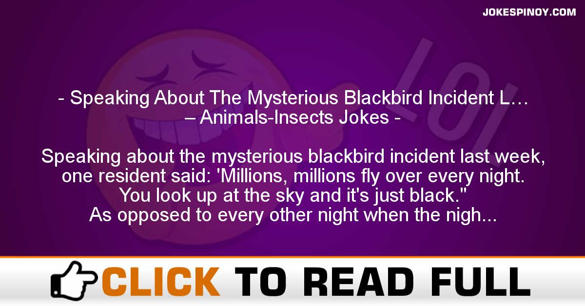 Speaking About The Mysterious Blackbird Incident L… – Animals-Insects Jokes