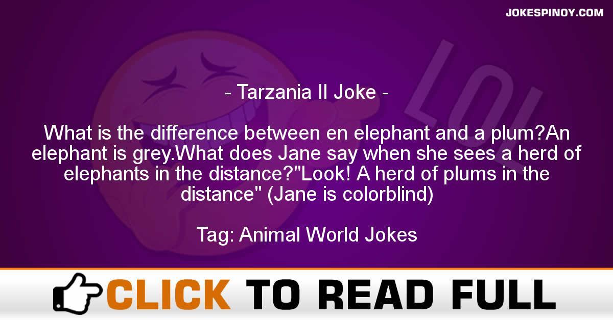 Tarzania II Joke