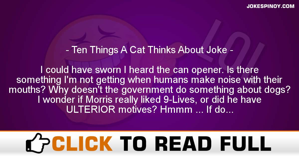 Ten Things A Cat Thinks About Joke