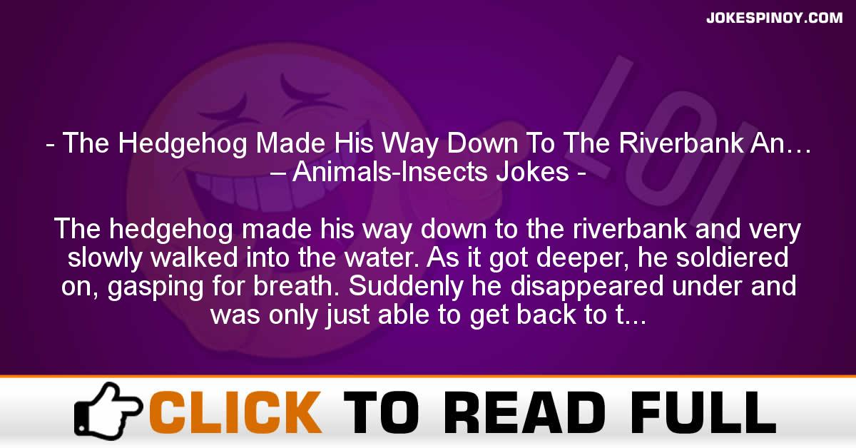 The Hedgehog Made His Way Down To The Riverbank An… – Animals-Insects Jokes
