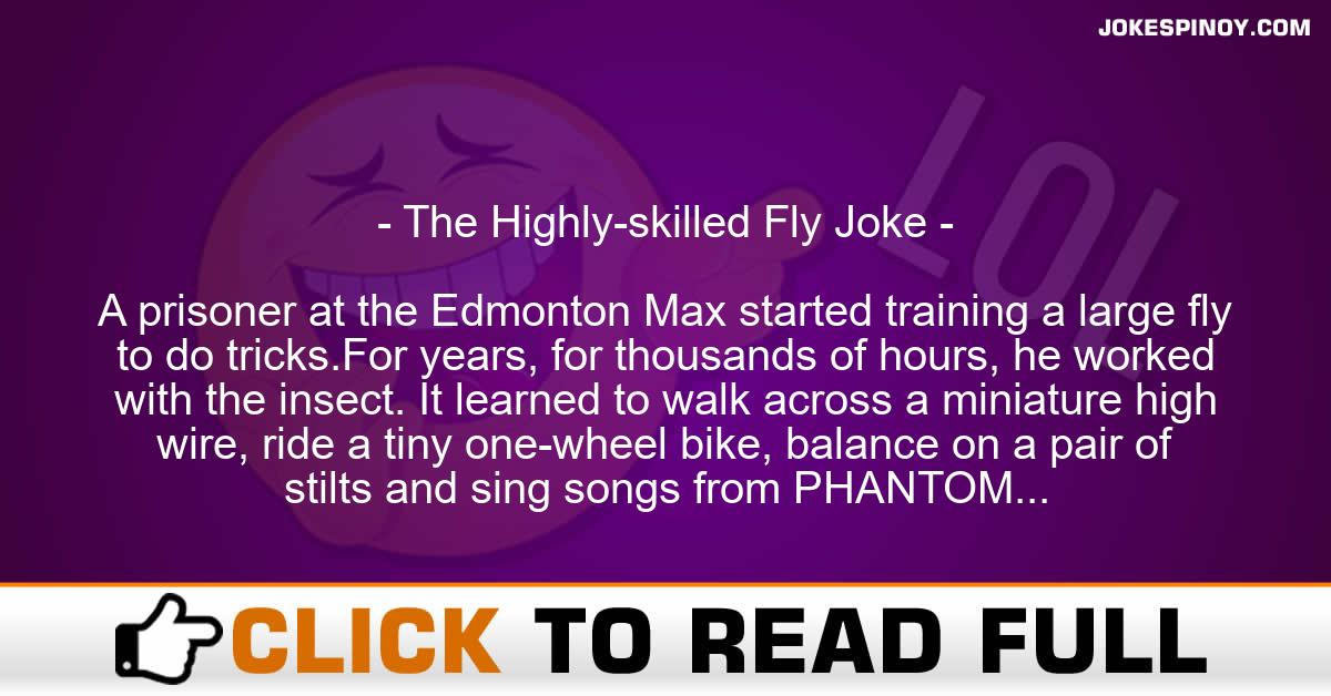 The Highly-skilled Fly Joke