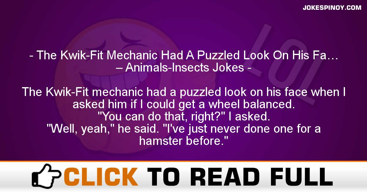 The Kwik-Fit Mechanic Had A Puzzled Look On His Fa… – Animals-Insects Jokes