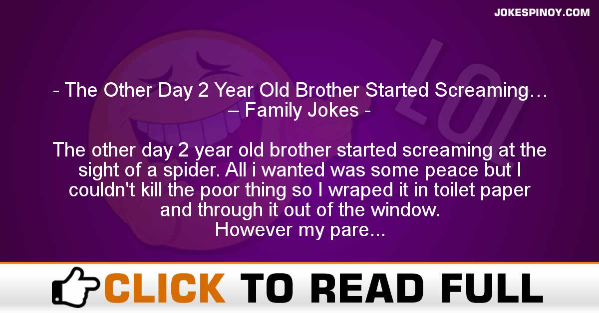 The Other Day 2 Year Old Brother Started Screaming… – Family Jokes