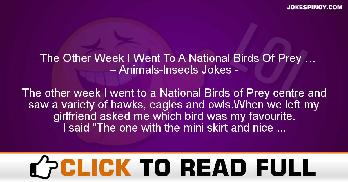 The Other Week I Went To A National Birds Of Prey … – Animals-Insects Jokes