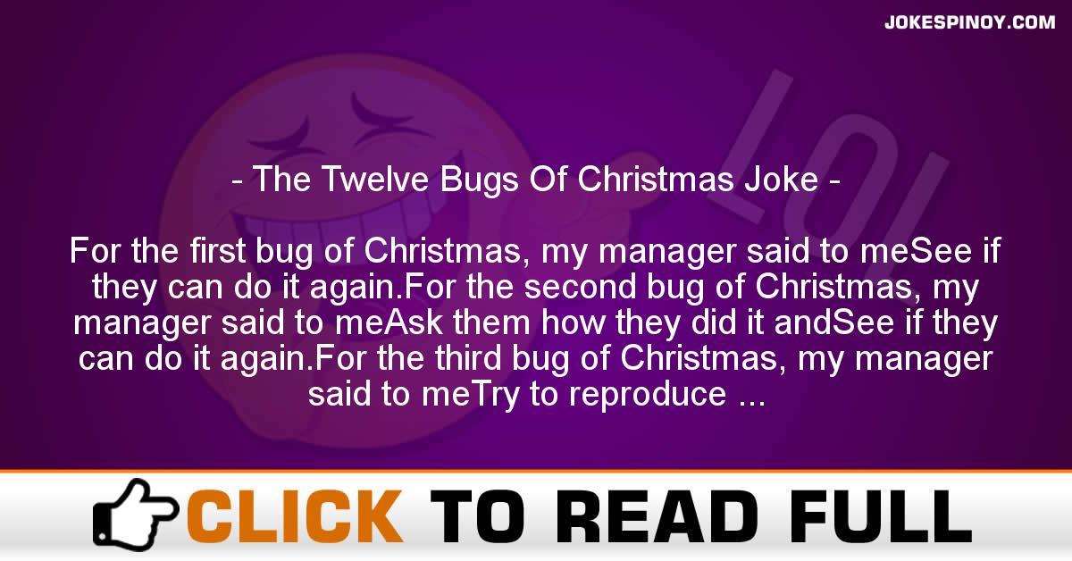 The Twelve Bugs Of Christmas Joke