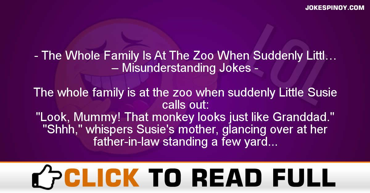 The Whole Family Is At The Zoo When Suddenly Littl… – Misunderstanding Jokes