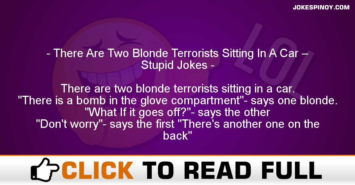 There Are Two Blonde Terrorists Sitting In A Car – Stupid Jokes