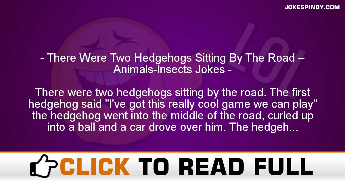 There Were Two Hedgehogs Sitting By The Road – Animals-Insects Jokes