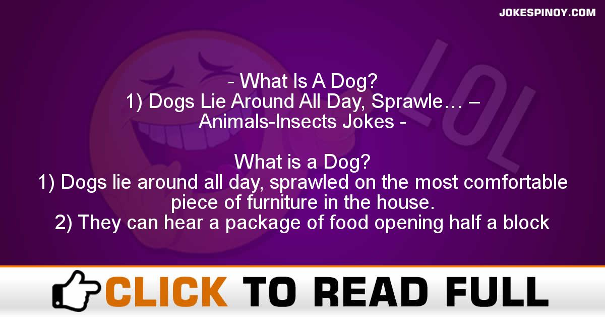 What Is A Dog? 1) Dogs Lie Around All Day, Sprawle… – Animals-Insects Jokes
