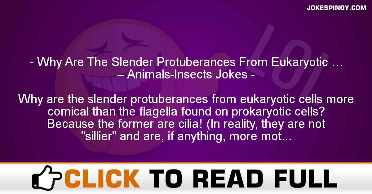 Why Are The Slender Protuberances From Eukaryotic … – Animals-Insects Jokes