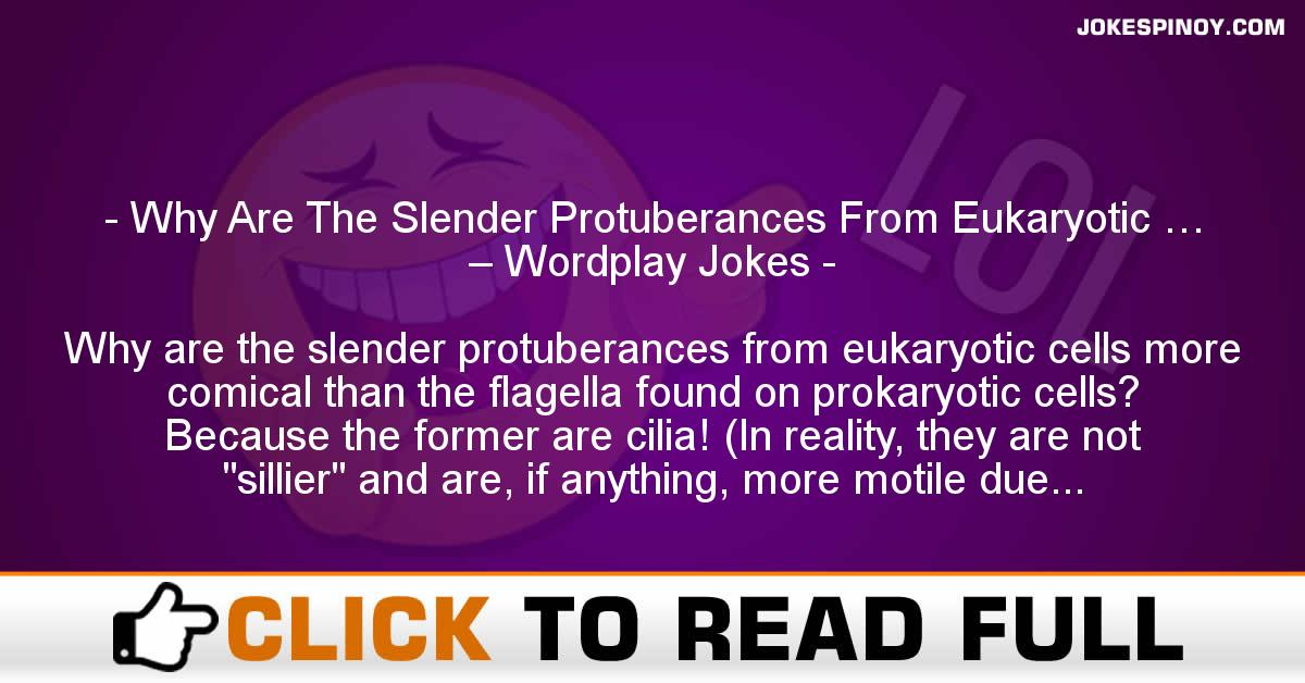 Why Are The Slender Protuberances From Eukaryotic … – Wordplay Jokes