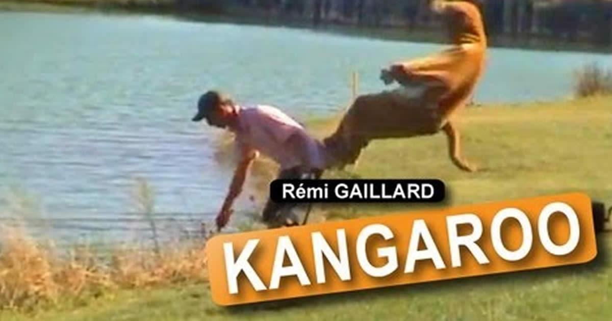 Kangaroo Prank Funny Video